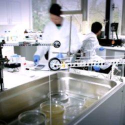 Такое понятие, как лабораторное оборудование